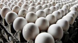 Ägg handlas snart på termin