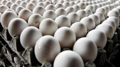 Lägg inte alla ägg i en och samma korg