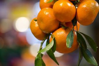 Coca-Cola till domstol för märkning av apelsinjuice
