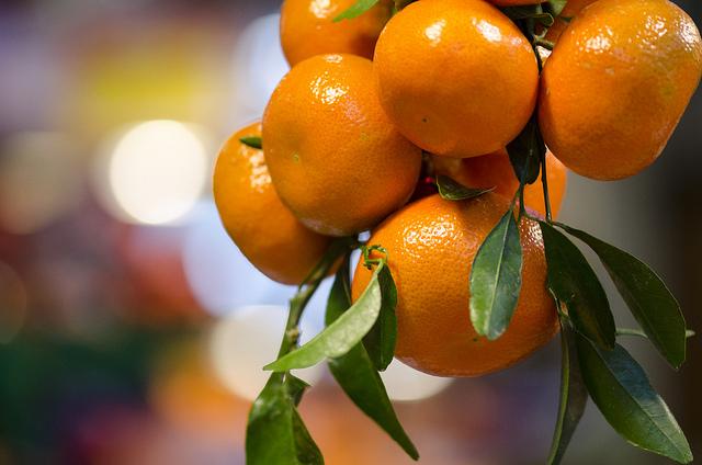 Apelsiner till apelsinjuice