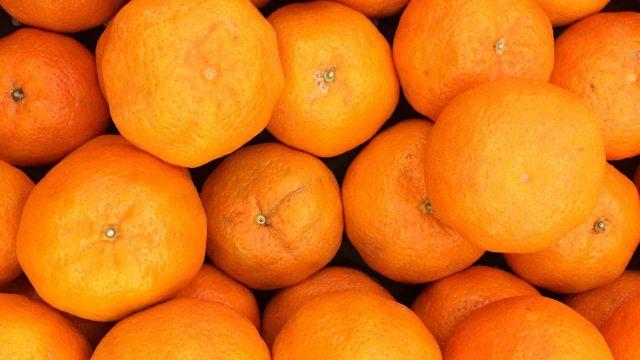 apelsiner.jpg
