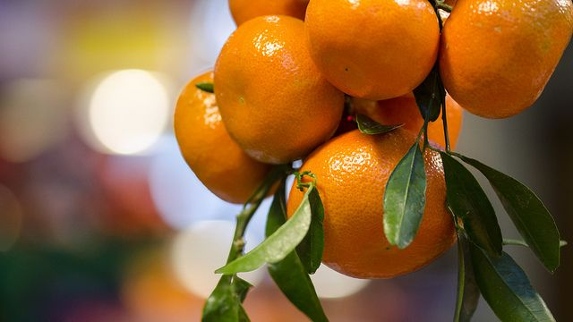 apelsiner-till-apelsinjuice.jpg