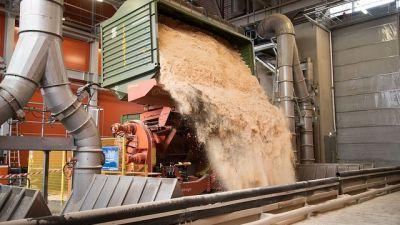 bioenergi.jpg
