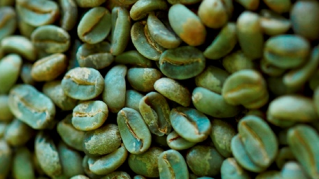 gröna kaffebönor pris