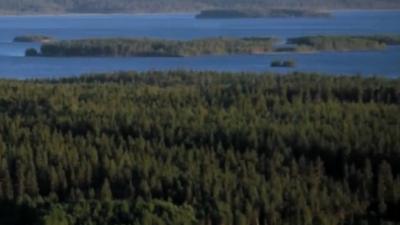 investera-i-skog-mark.png