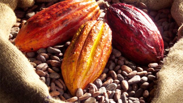 kakao-frukt.jpg