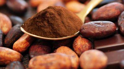 kakao-mald-bonor.jpg
