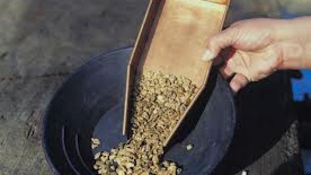 nytt-guld-vaskas-fram.jpg
