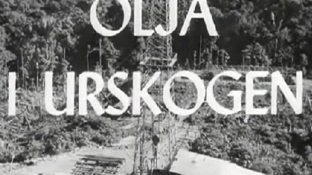olja-i-urskogen-shell-ecuador.png