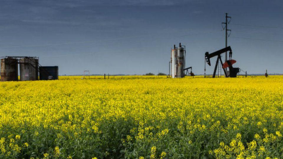olja-jordbruk-el-handla.jpg