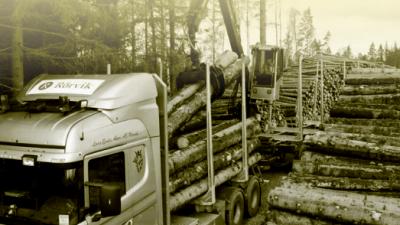 rorvik-timber-timmer-lastar.png