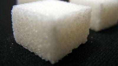 socker-bitar-uwe-hermann.jpg