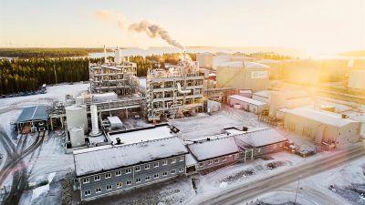sunpine-diesel-fabrik.jpg