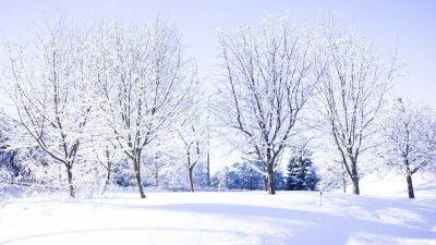 vinterlandskap.jpg