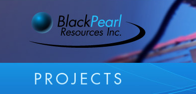 Black Pearl Resources i Stockholm