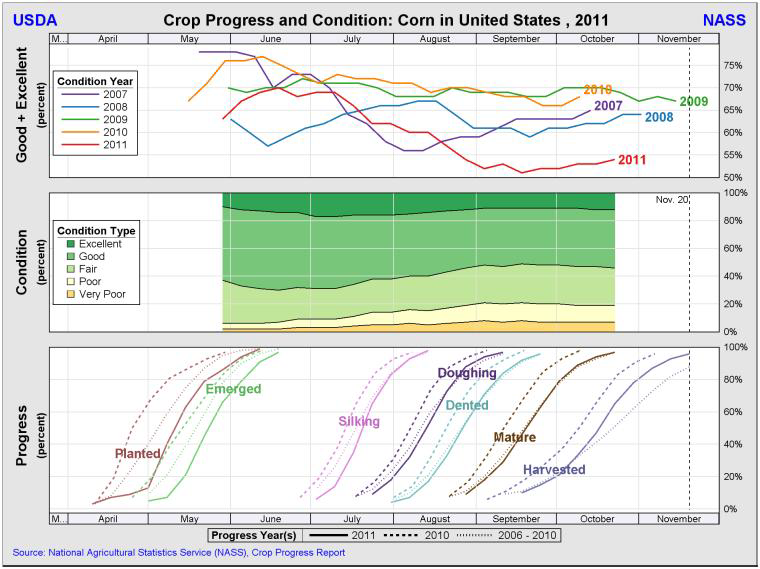 Crop progress and condition - Corn US 2011