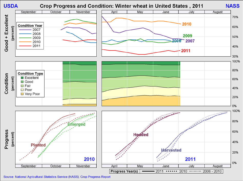 Crop progress and condition - Winter Wheat US 2011