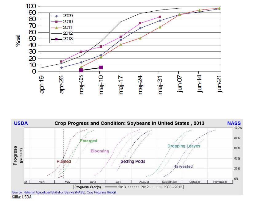 Crop progress för sojabönor