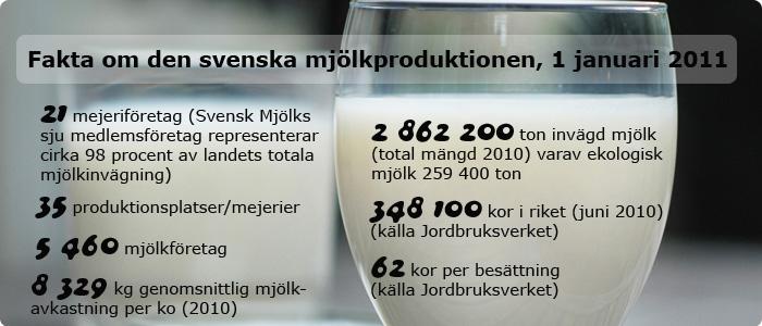 Fakta om svensk mjölkproduktion