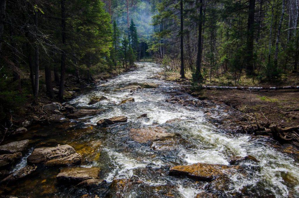 Flod som forsar