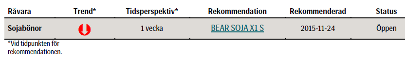Bear Soja