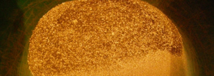 Guld från guldbolaget Kopy Goldfields