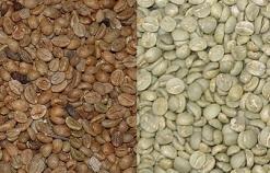 Bevaka kaffepriset