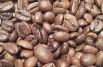 Djupdykning i kaffemarknaden