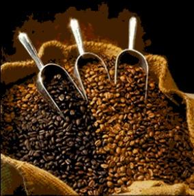 Kaffepriset - Bönor från Brasilien