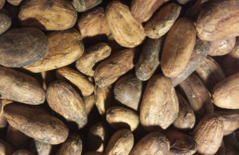 Kakao, nästa heta råvara