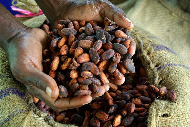 Säck med kakaobönor