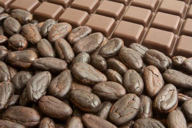 Kakao och choklad