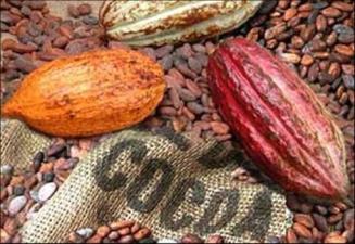 Kakaopriset kring treårshögsta