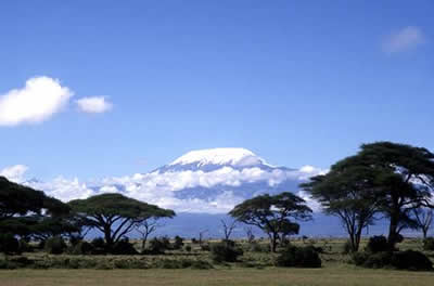 Kilimanjaro-berget, i närheten av Kilimanjaro Gold
