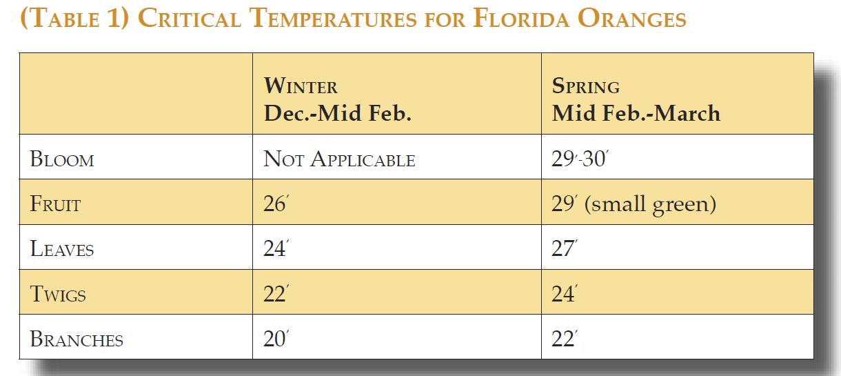 Kritiska temperaturer för apelsiner från Florida