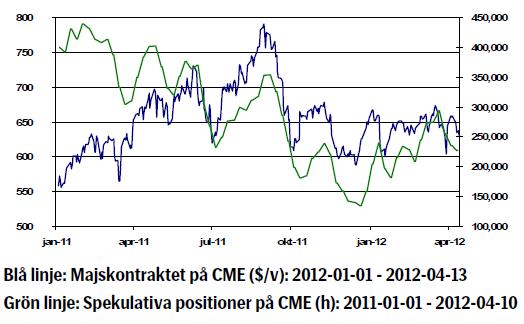 Majs - Kursutveckling och spekulativa positioner
