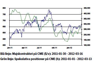Majs pris och spekulativa positioner