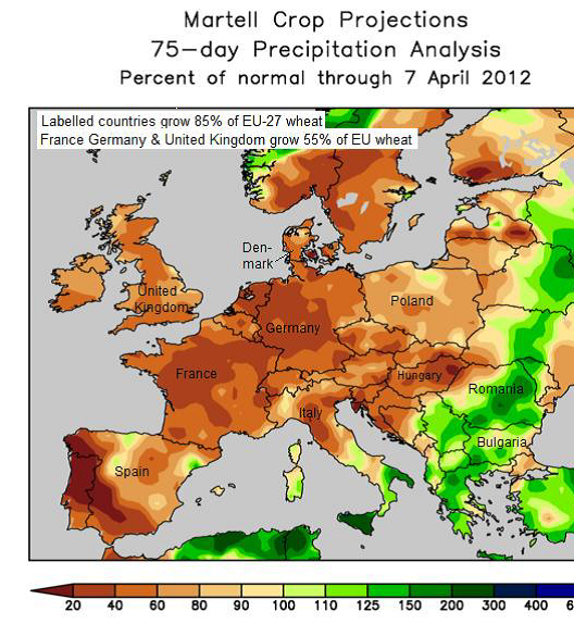 Martell crop projections - Prognoser