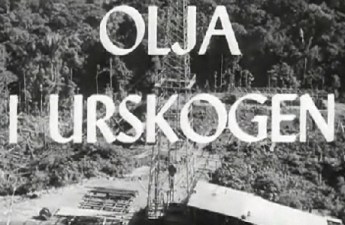 Olja i urskogen år 1949
