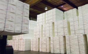 Marknaden för pappersmassa - Råvarumarknaden