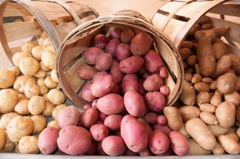 Nu kan du handla potatis på börsen