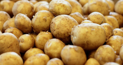 Potatis, den enda råvaran som har handlats till noll