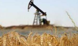 Olja och jordbruk - Minskat intresse sför råvaror ger Swedbank