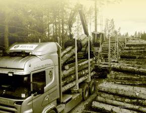 Gunvor Group tar kontroll över Rörvik Timber
