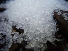 Socker, en råvara som handlas på råvarubörsen