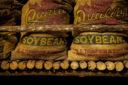 Är priset på sojabönor på väg ur sin långa botten?