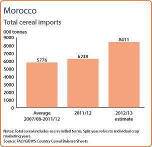 Spannmålsimport i Marocko