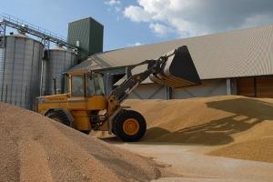 Spannmål ökar i popularitet hos jordbruk i Sverige
