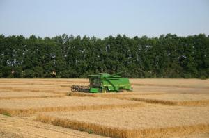 Trigon Agri - Jordbruk på Stockholmsbörsen