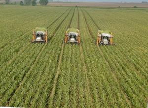 Trigon Agri A/S skördar i öster